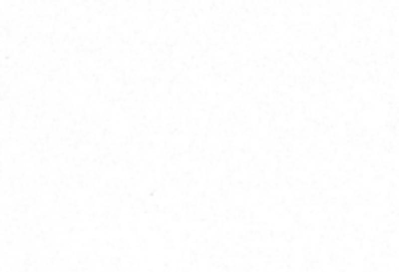 AR616 Bianco Puro